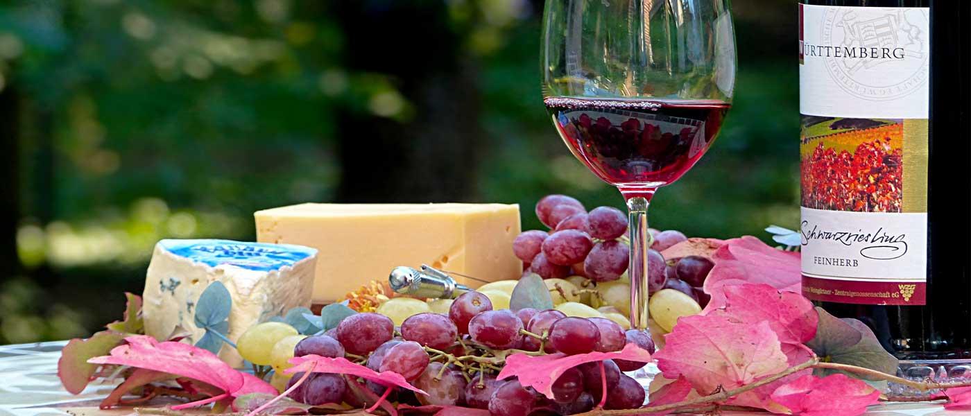 boutique-vins-palpacuer